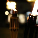 Candlelight-Shopping_2014_11