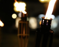 Candlelight-Shopping_2014_11