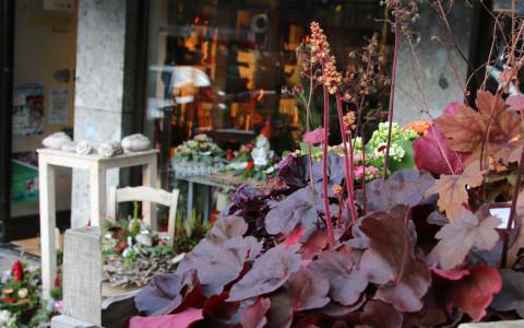 Einzelhandel, Innenstadt - Oberstadtgraben 5