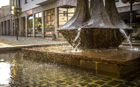 Foto: Simone Rein, www.srf-fotodesign.de
