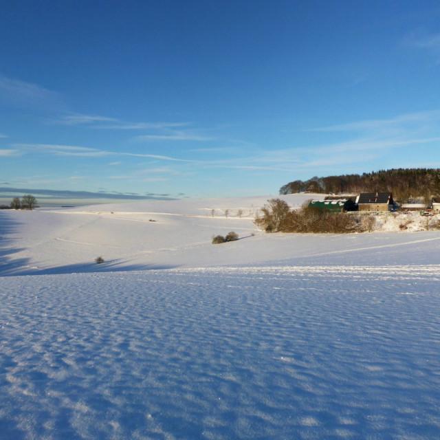 Verschneiter Sonneborn